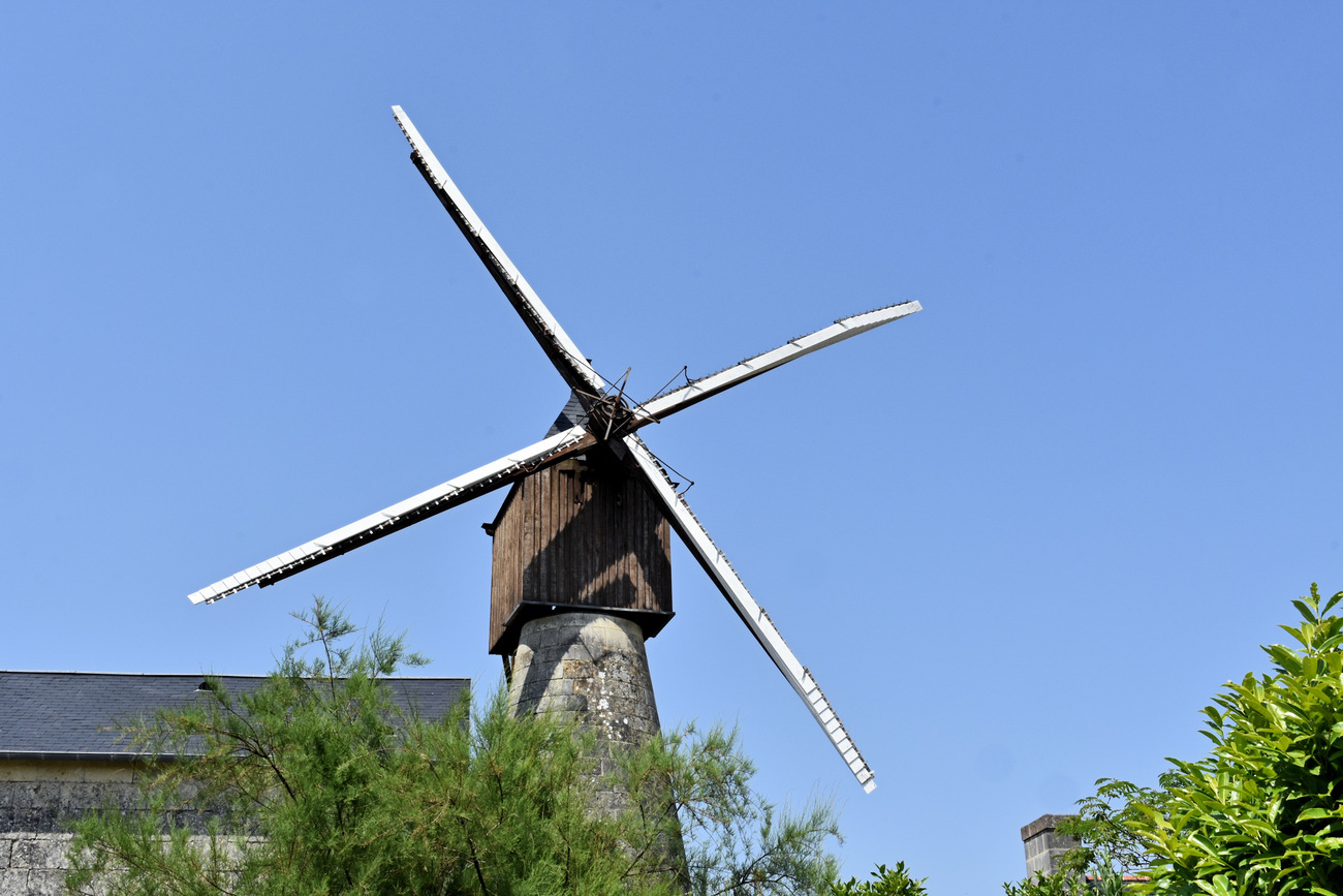 Moulin cavier - Mill cavier
