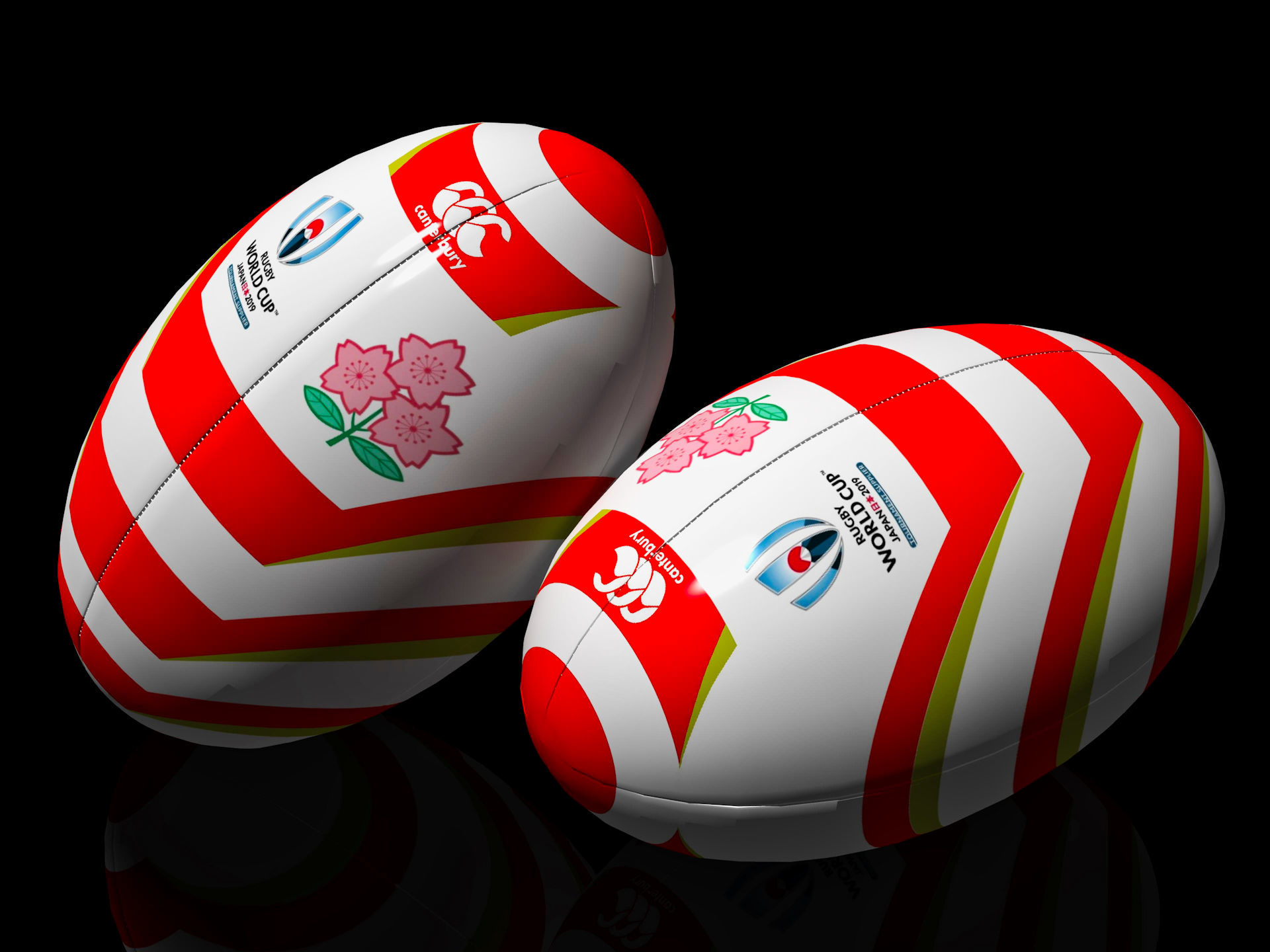 RUGBY WORLD CUP JAPAN 2019 (2)