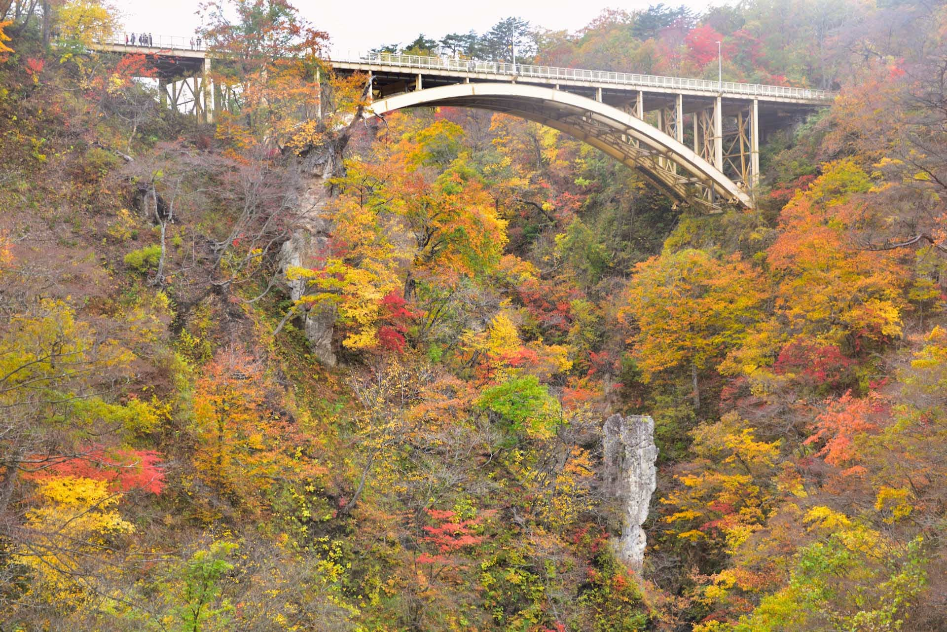 The colored leaves of Naruko gorge