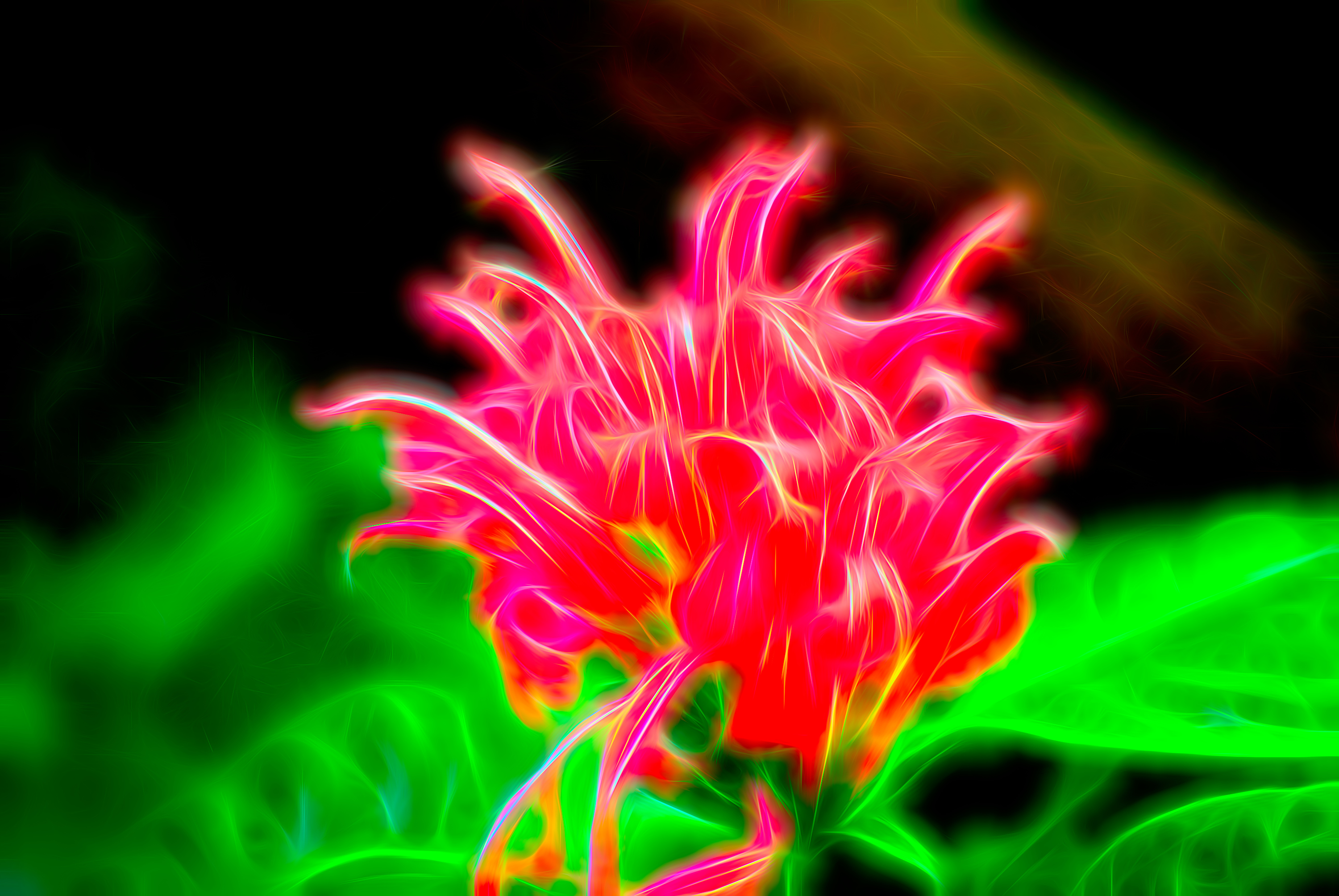 Electric flower