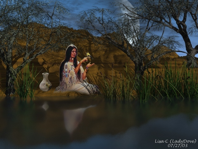 Indian Reflections by LadyLisa